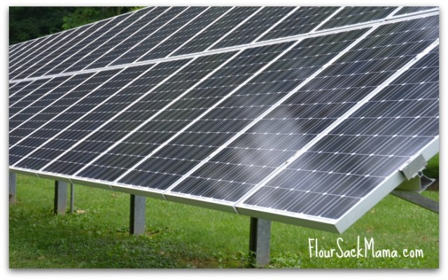 Weikert Home Solar Panel