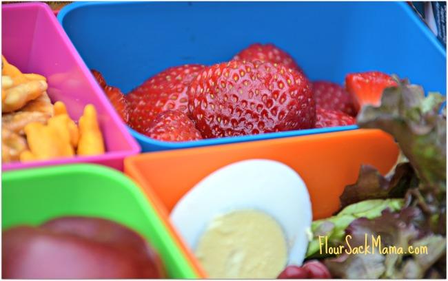 Strawberries Egg CU