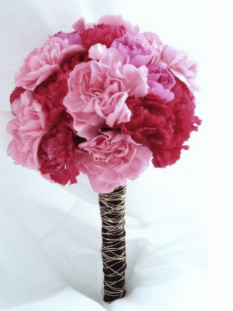 Carnation Flower Corsage Bouquet Pink Red Carnation.png