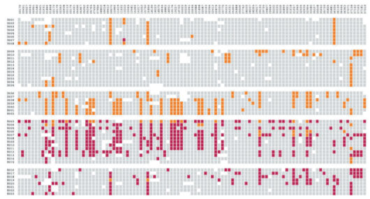 Computational Information Design