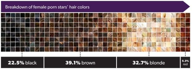 Porn star hair color