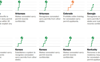 Gun laws by NYT