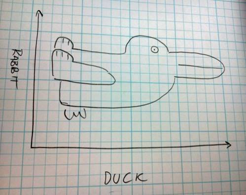 rabbit or duck