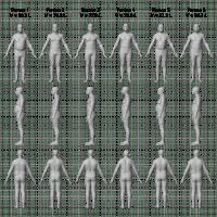 Same BMI