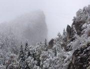 Prima zăpadă în Postăvarul