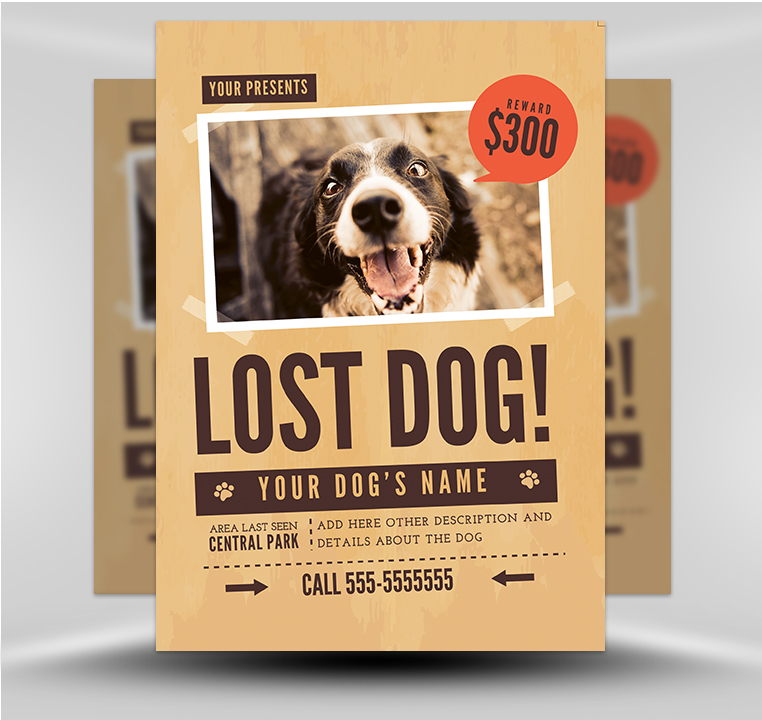 Lost Dog Flyer Template 1 - FlyerHeroes