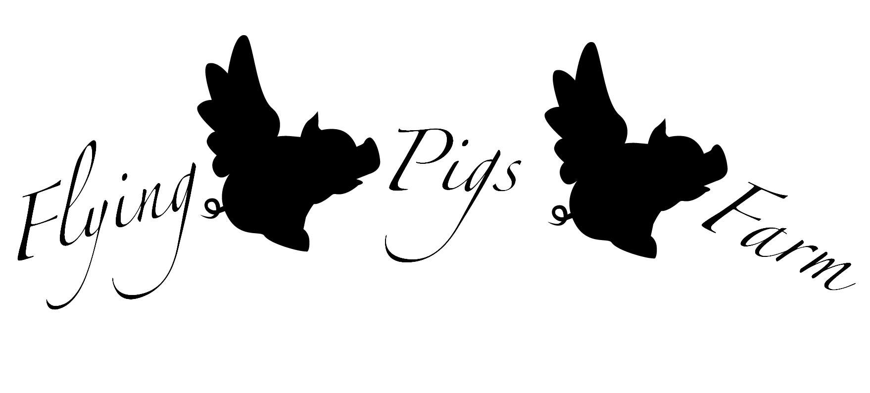 Black And White Wallpaper Pictures Flying Pig Logo