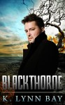 Blackthorne by K. Lynn Bay