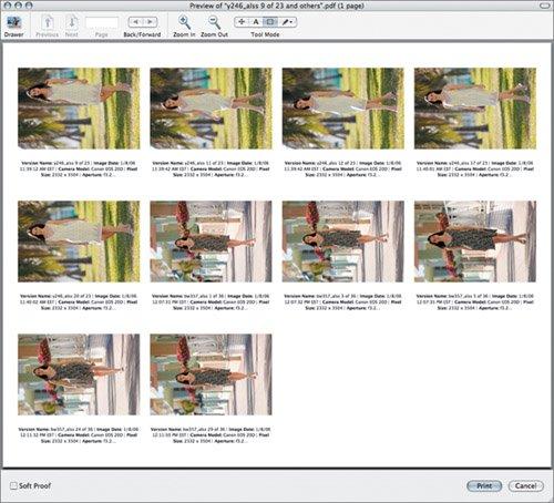 Sample Contact Sheet Standard Example Crammed-Thumbnails Example - sample contact sheet