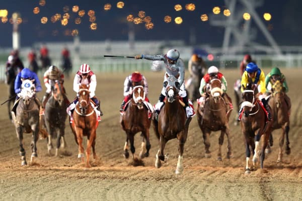 The 2016 Dubai World Cup