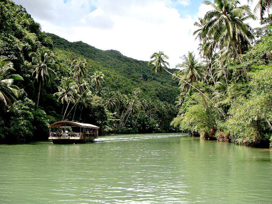 Regenwald Bohol