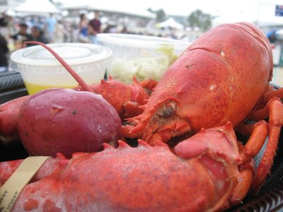 Tasty, steamed lobster.