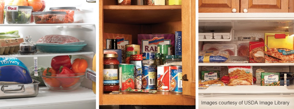 Food Storage Chart for Cupboard/Pantry, Refrigerator and Freezer
