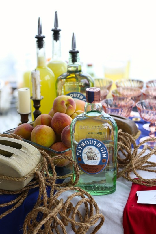 Plymouth gin - courtesy of Christina Slaton