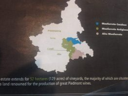 Small but mighty Soave region