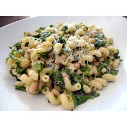 Small Crop Of What Is Cavatappi