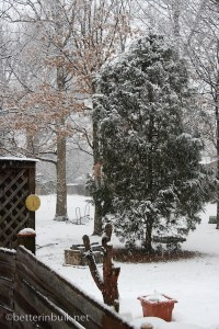 Beginning of snow storm of 2010