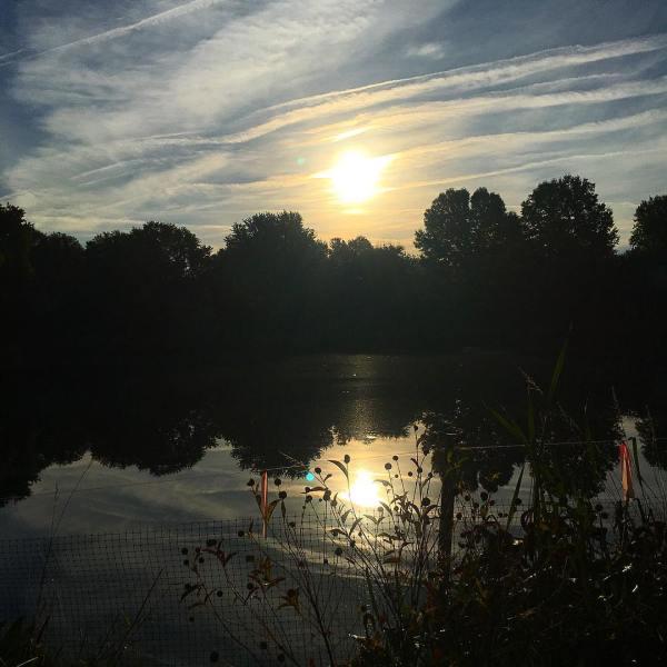 morning sun reflection