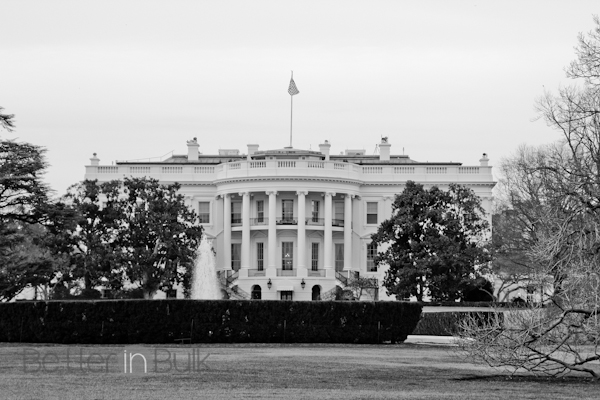 washington DC in black and white