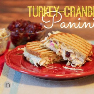 Turkey-Cranberry Panini {Thanksgiving Leftovers Recipe} #15MinuteSuppers