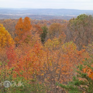 Sugarloaf Mountain in Fall #PSF Give Me Your Best Shot