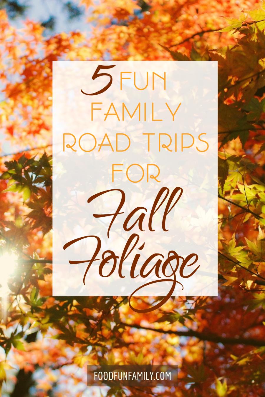 5 Fun Family Road Trips for Fall Foliage