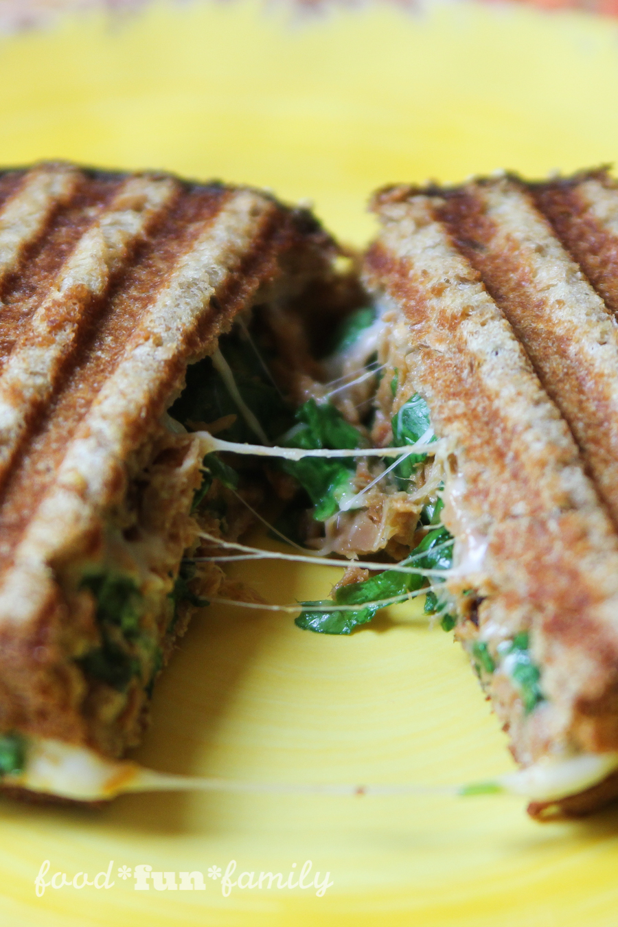 Sun dried Tomato Tuna Panini