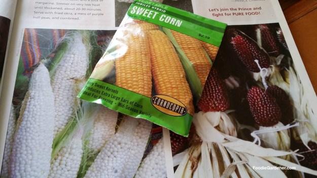 corn seed comes in many varieties foodie gardener