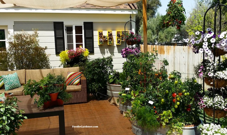 Small Patio Vegetable Garden Ideas Part - 33: Patio With Container Vegetable Garden And Entertaining Sitting Area Foodie  Gardener
