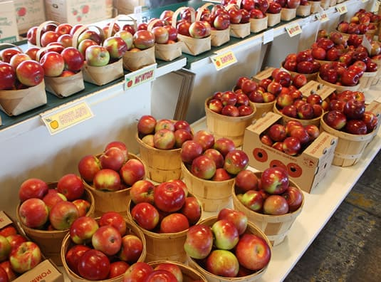 Different apple varieties from the Verger Viateur Turcotte & Fils
