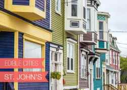{Edible Cities} St. John&#8217;s, Newfoundland with Charmian from Christie&#8217;s Corner