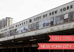 {Edible Cities} New York City, with Albane &#038; Evi from Whip+Click