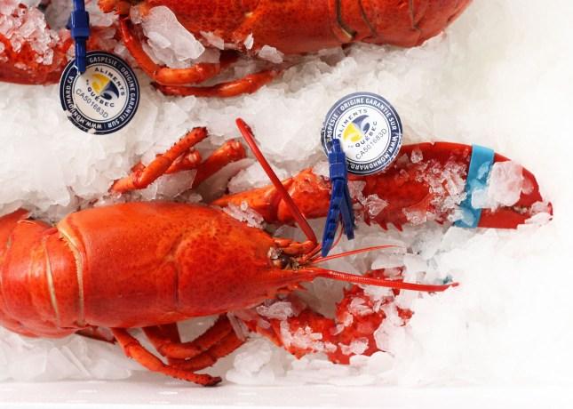 It's lobster season! // FoodNouveau.com