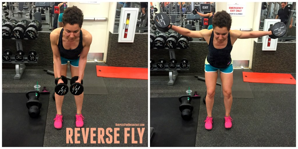 reverse-fly-lifting-for-a-strong-back-and-better-posture