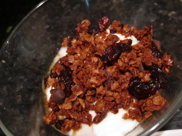 Yogurt with homemade granola | foodsciencenerd.com
