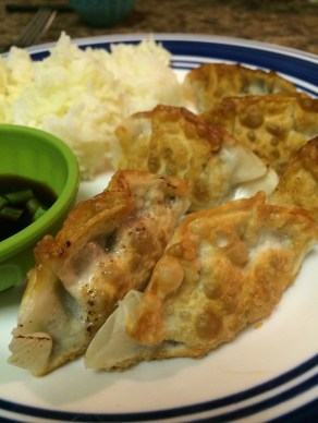 Fried Potstickers | foodsciencenerd.com