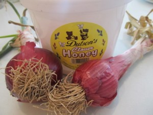 Natural honey onion cough syrup