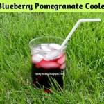 Best Antioxidant Drink / Blueberry Pomegranate Cooler