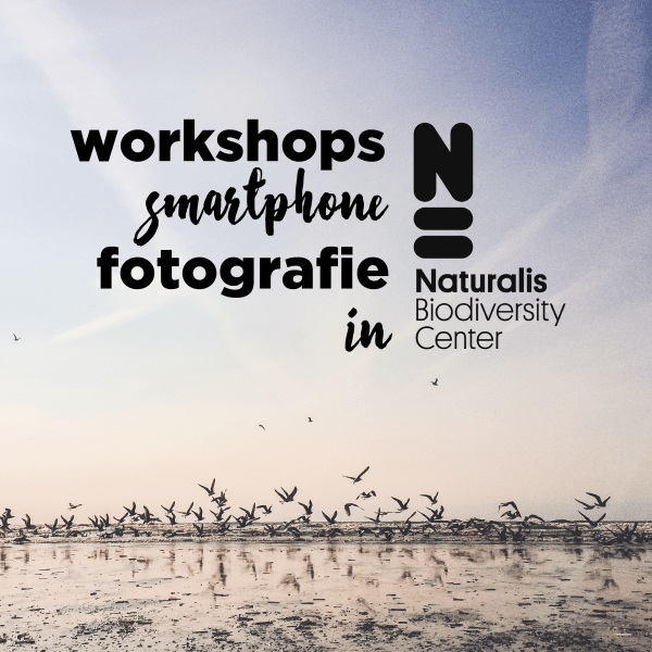 WORKSHOP SMARTPHONE FOTOGRAFIE NATURALIS