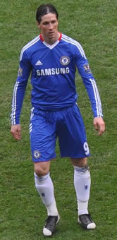 Fernando Torres has sruggled to score goals for Chelsea