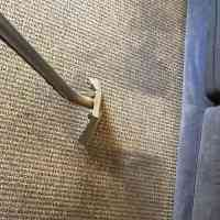 carpet greenville sc - Home The Honoroak
