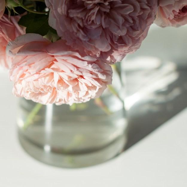week 10 - pink roses-1
