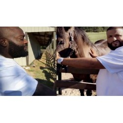 Sweet Dj Visits Rick Ross House Y Want You To Have Horses Dvd Dj Visits Rick Ross House Y Want You To Have Rick Ross House Miami Fl Rick Ross House Fayetteville Ga