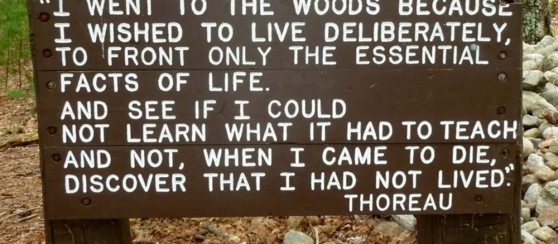 A (Transcendentalist) Walk in the Woods - Ecology Lesson Plan