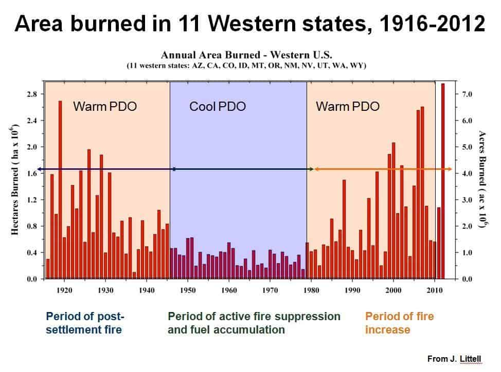 Official Year-to-Date Wildfire Stats Beyond the Rhetoric  Hysteria