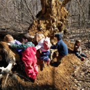 Meet Our Forest Discoverer Groups