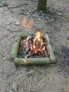Temporary fire 1