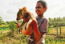 Boy selling the rodent agouti in Guyana. Photo: Manuel Lopez/CIFOR