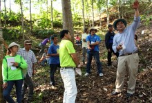 Explaining Smart Tree-Invest somewhere else in Lantapan. Photo: World Agroforestry Centre