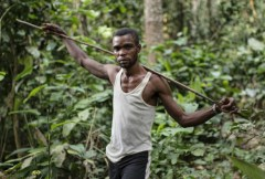 From the Congo to the Amazon, hunters speak the same language
